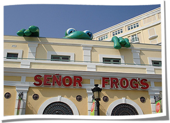 Senior Frog's Inflatable Rooftop Advertising Mascot