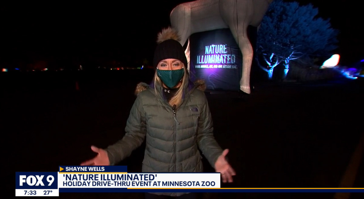 Reporter for FOX9 News in front of Inflatable Moose at Minnesota Zoo's Nature Illuminated