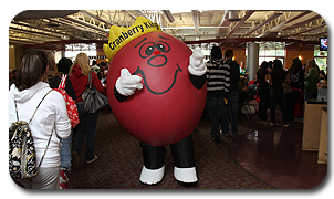 Inflatable Cranberry Costume for Rider University