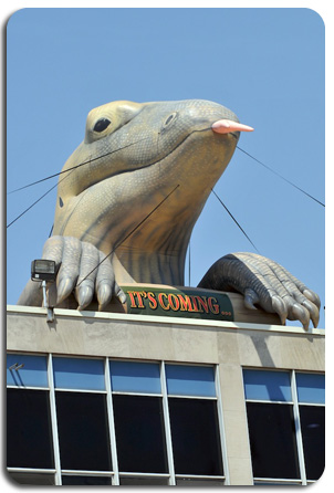 Cincinnati Zoo's Inflatable Komodo Dragon on Museum Rooftop
