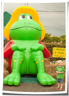 Inflatable Toad Mascot at Community Event