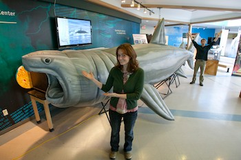 Sisbro Studio's Educational Inflatable Basking Shark