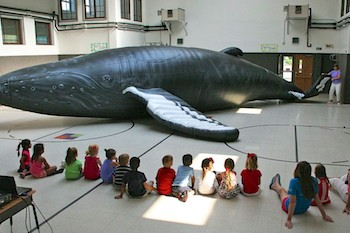 Inflatable Humpback Whale at Elementary School