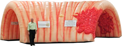 CDC Approved Inflatable Colon