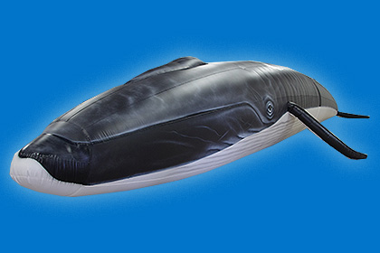 Blue Ocean Society Inflatable Whale