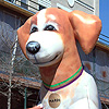 Inflatable Mardi Gras Dog