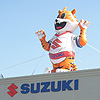 Tiger Mascot on Dealership