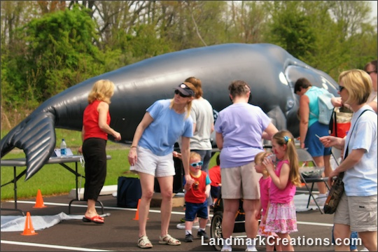 DASEF Inflatable Whale at Educational Event