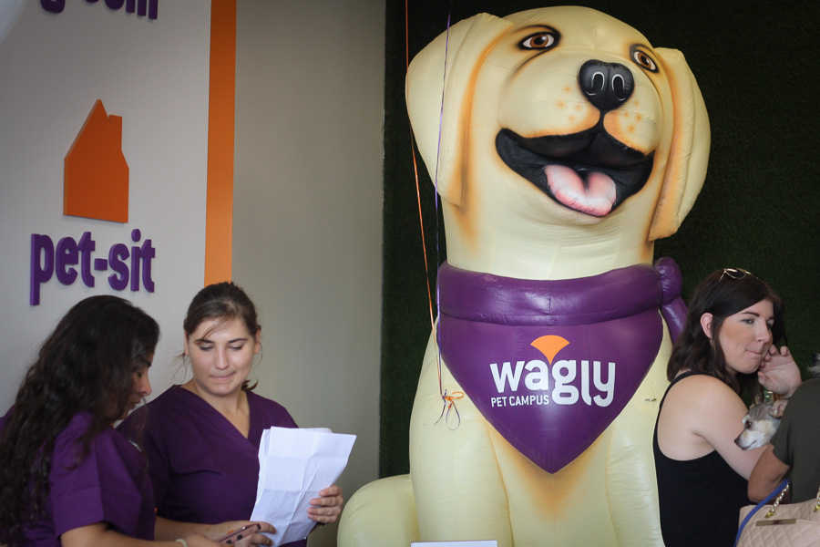 L5311 Wagly Inflatable Dog Mascot